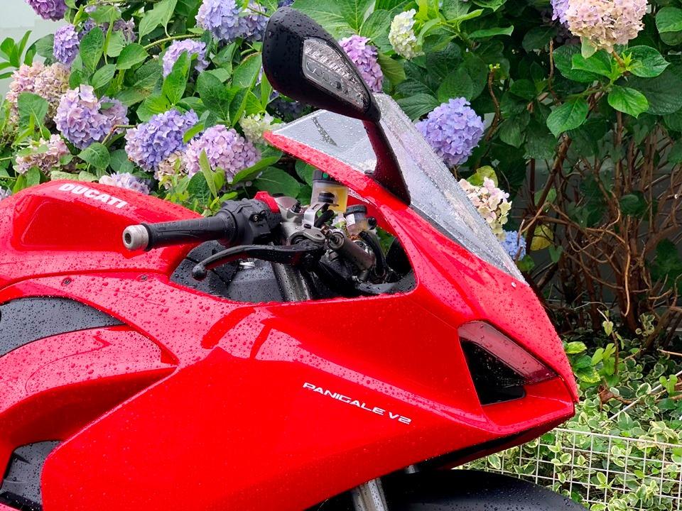 雨と紫陽花とパニガーレV2。